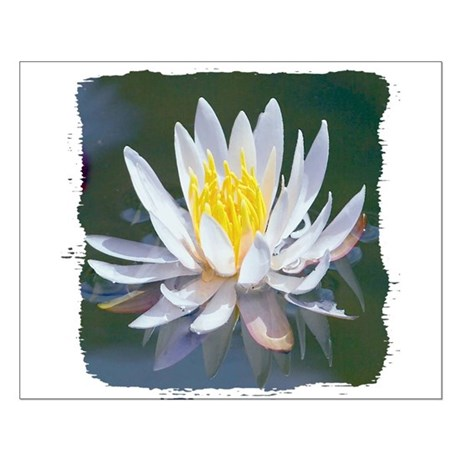 Lotus Blossom Small Poster