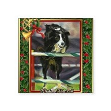 "Border Collie Agility Chris Square Sticker 3"" x 3"""