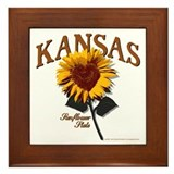 Kansas - The Sunflower State! Framed Tile