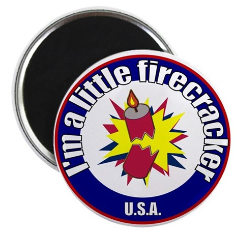 Little Firecracker Magnet