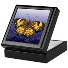 Pearl Crescent On Plaster Keepsake Box