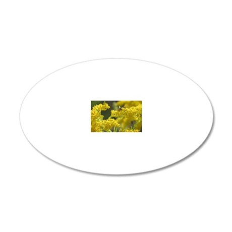 Yellow Jacket 20x12 Oval Wall Decal