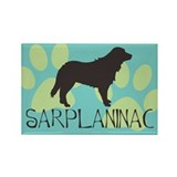 sarplaninac Rectangle Magnet