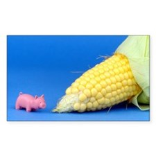 Pig Corn Decal