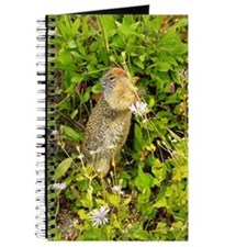 Cute Chipmunk photo Journal