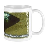 Rostratus Mug