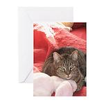 valentine cat Greeting Cards