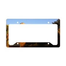 Sedona_12.2x6.64_CathedralRoc License Plate Holder