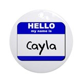 hello my name is cayla  Ornament (Round)
