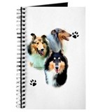 Collie Trio Journal