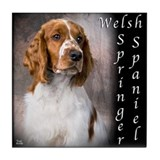 Welsh Springer Spaniel Tile Coaster