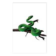 Green Tree Python Postcards (Package of 8)