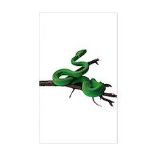 Green Tree Python Rectangle Decal