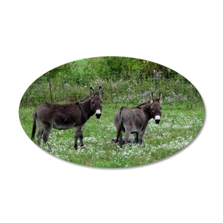 Two Miniature Donkeys 35x21 Oval Wall Decal