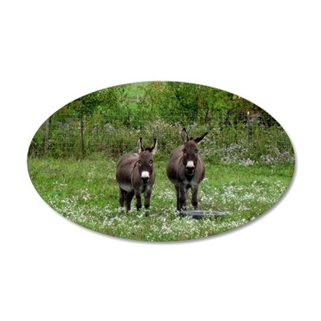 Two Miniature Donkeys (2) 35x21 Oval Wall Decal