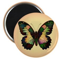 Luminous Butterfly Magnet