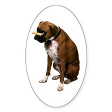 Brindle Boxer Photo Oval Decal
