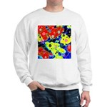 Pickatto by Tal Lynch Sweatshirt