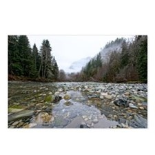 Middle fork River Postcards (Package of 8)