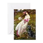 Windflowers & Black Lab Greeting Cards (Pk of 10)