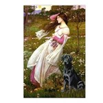 Windflowers & Black Lab Postcards (Package of 8)