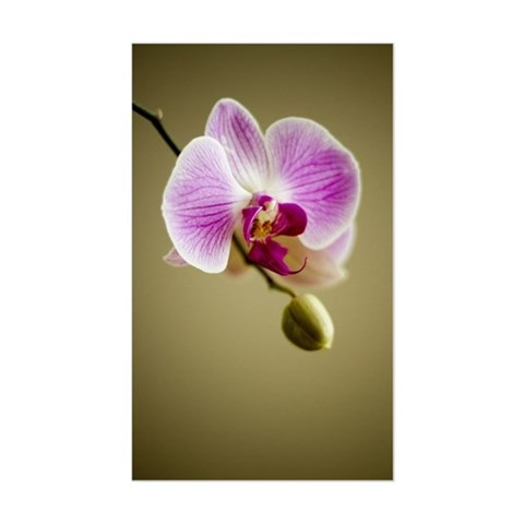 Macro Orchid Sticker (Rectangle)
