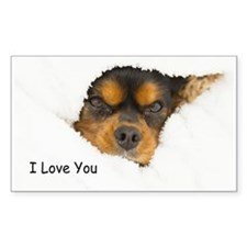 I Love You Cavalier King Charles Spaniel Decal