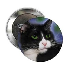 """Funny Cat art 2.25"""" Button (100 pack)"""