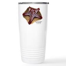 Red-Knobbed Starfish Travel Mug