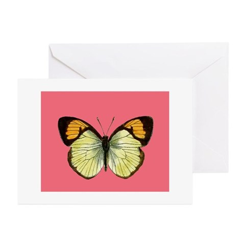 Butterfly On Pink Greeting Cards