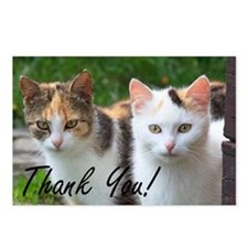 Thank You Cats Postcards (Package of 8)