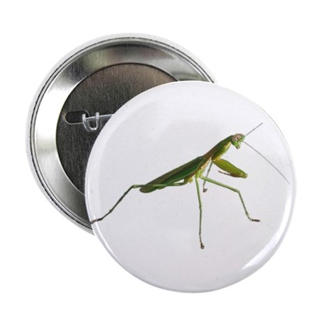 Praying Mantis Button