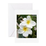 Plumeria Greeting Cards (Pk of 10)