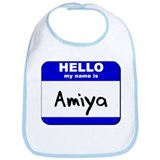 hello my name is amiya  Bib