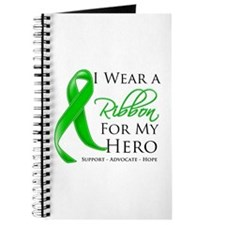 Traumatic Brain Injury Hero Journal