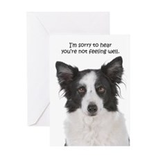 Border Collie Get Well Greeting Card