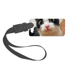 Hypno-Cat Luggage Tag