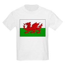 Cute Flag of wales T-Shirt