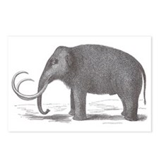 Woolly Mammoth Extinct Ma Postcards (Package of 8)