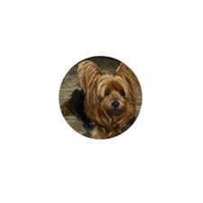 Yorkshire Terrier Mini Button (100 pack)