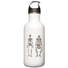 Evolution Man and Ape  Water Bottle