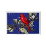 Northern Cardinal Bird Rectangle Magnet (10 pack)