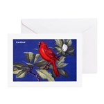 Northern Cardinal Bird Greeting Cards (Package of