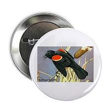 Red-Winged Blackbird Bird Button