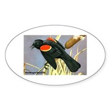 Red-Winged Blackbird Bird Oval Decal
