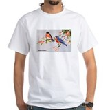 Baltimore Oriole Bird (Front) Shirt
