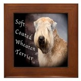 Soft Coated Wheaten Terrier Framed Tile