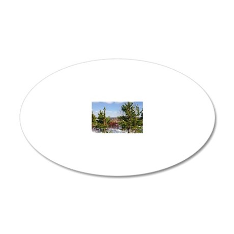 Scenic 20x12 Oval Wall Decal