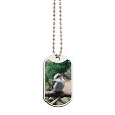 Kookaburra Bird in a Tree Dog Tags