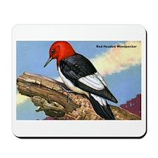 Red-Headed Woodpecker Bird Mousepad